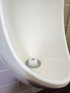 5 Stk Ecobug extrastarke Urinalstein-Caps zur Wassereinsparung sowie effektiven und ökologischen Geruchsbekämpfung auf mikrobieller Basis in wasserlosen und wassergespülten Urinalen mit Kirsch Duft 004