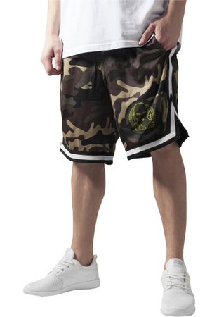 Hirntot Records Shorts camouflage
