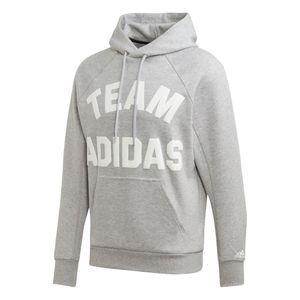 adidas Performance Team Adidas Hoodie Herren grau DX7957 – Bild 1