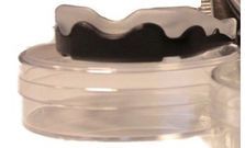 MG-Booster-Youth Mouthguard for children transparent/black