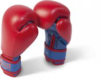 Paffen-Sport Kids Boxing Gloves for training in red / blue