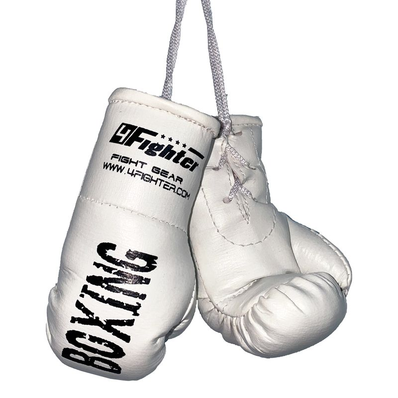 4Fighter Mini Boxhandschuhe weiß Boxing