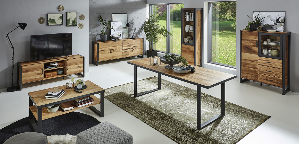 Wohnmöbel VIRGINIA im Industrial-Style