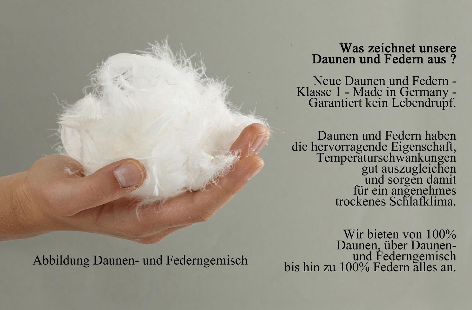 Ballonbett 50% neue deutsche Gänsedaune 135x200 Winter-Bettdecke – Bild 2