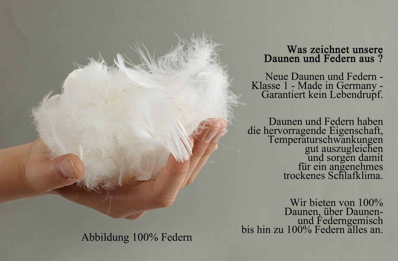 Ballonbett 100% Gänsefedern 3700g 155x220 Winter-Bettdecke – Bild 2