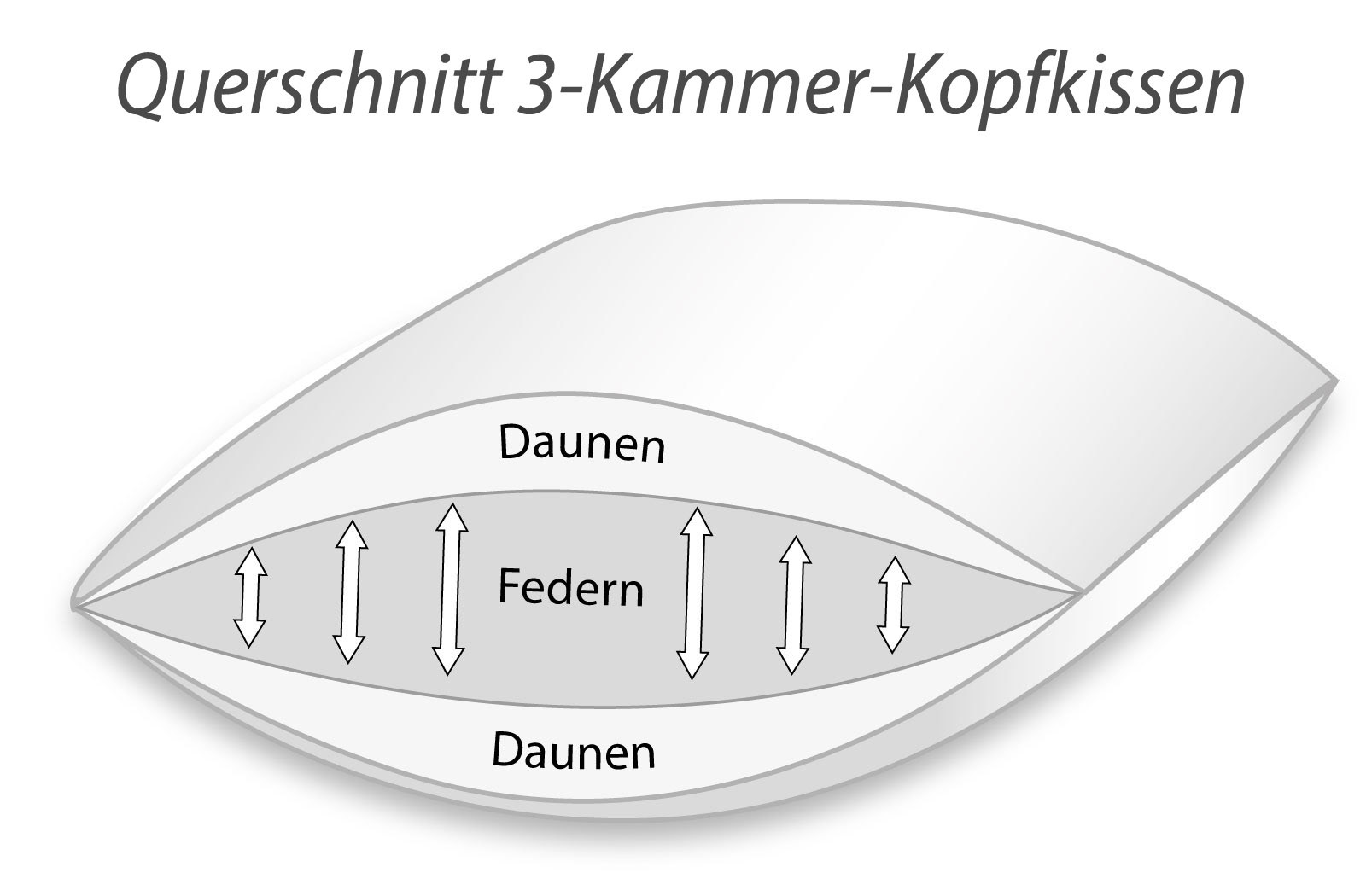 3-Kammer Kopfkissen Premium Kissen Daunen Federn Klasse 1  40x80 Carla – Bild 4