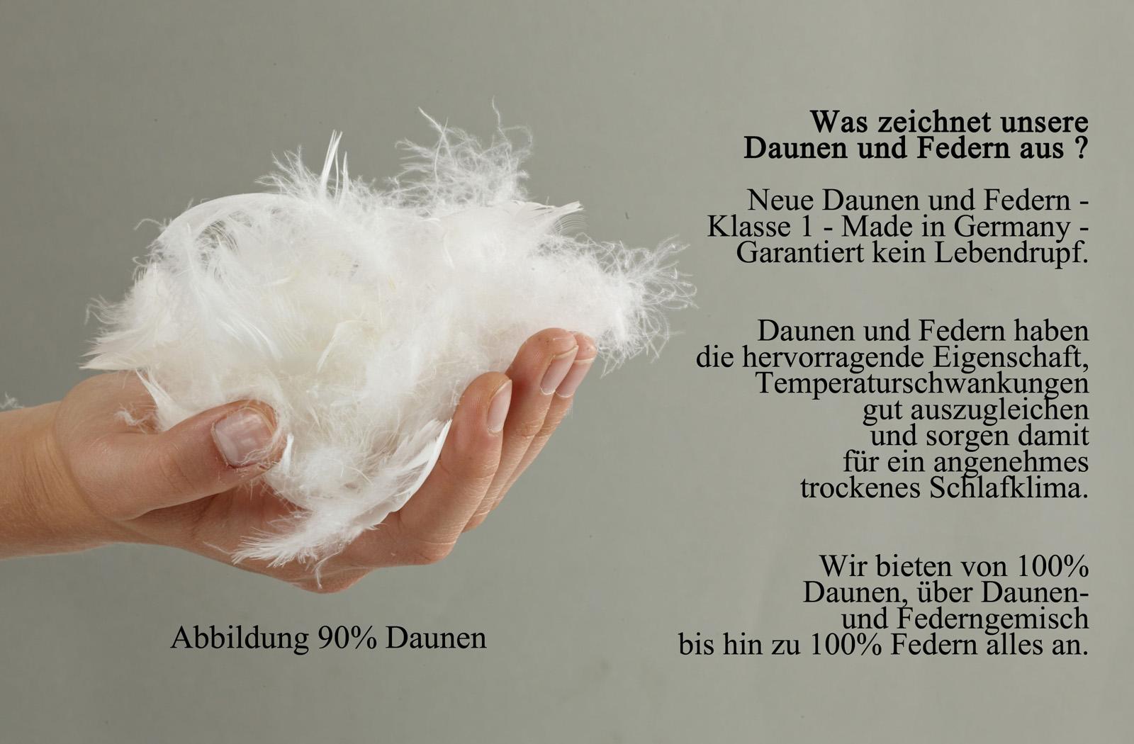 3-Kammer Kopfkissen Premium Kissen Daunen Federn Klasse 1  80x80 Carla – Bild 2