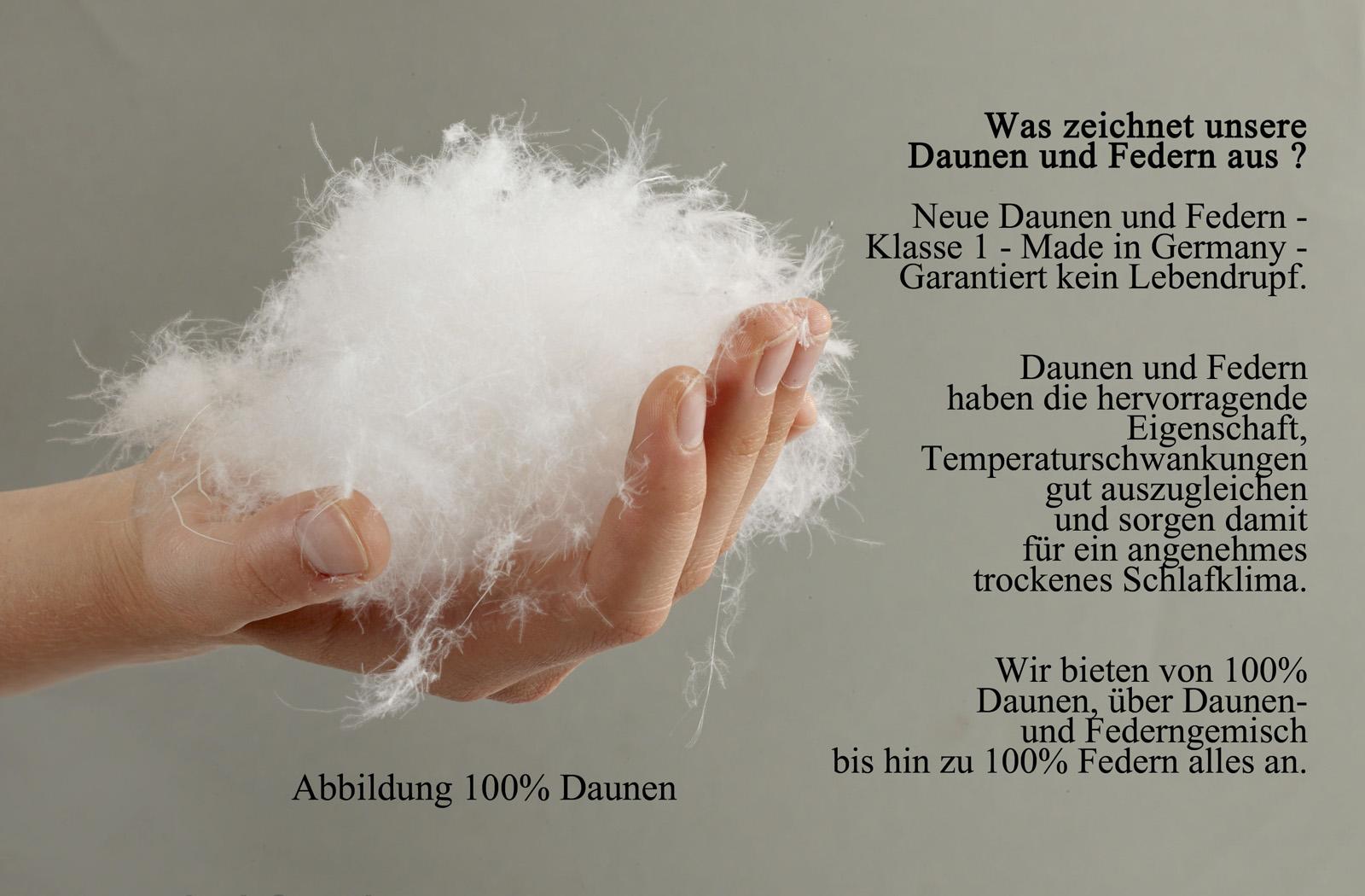 Kinder Daunendecke Bettdecke Baby Decke 100x135 100% Gänse-Daunen Kai – Bild 2