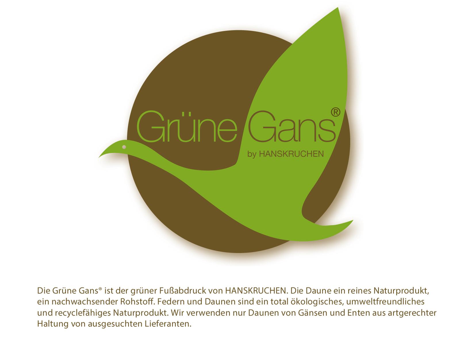 Bio Daunendecke 90% neue Freiland Gänsedaune naturbelassen mit kbA Baumwolle Grüne Gans Hanskruchen – Bild 3