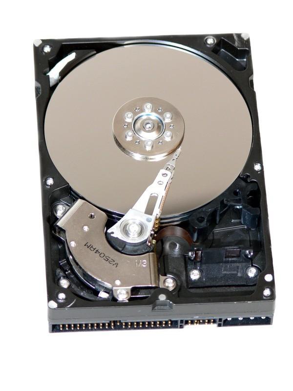 3,5  SATA III 1TB Festplatte intern Toschiba / Seagate / WesternDigital für Überwachungssystem