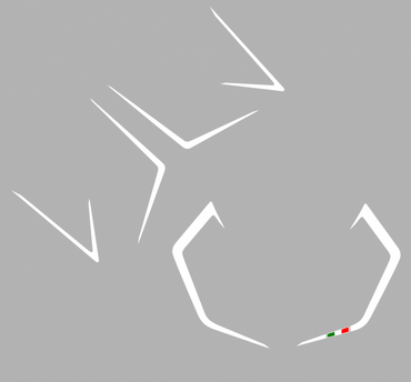 Aufklebersatz R Streifen für Ducati 899 1199 Panigale