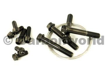 Titan Schrauben Kit für Ducati 1199 Panigale – Bild 1
