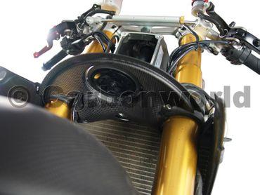 pannello corno in carbonio per Ducati 1199 Panigale – Image 2