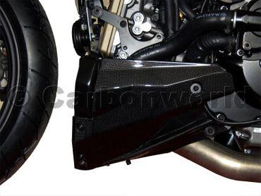 Spoiler Carbon matt für Ducati Streetfighter 848 – Bild 3