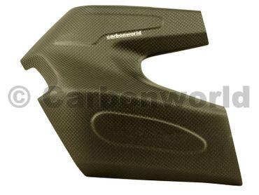 Schwingenschutz Carbon für Ducati Monster 1200 – Bild 1