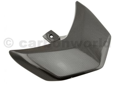 tail light cover carbon for Ducati Hypermotard – Image 2