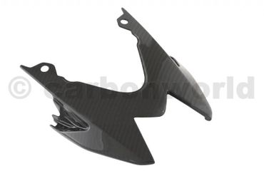 seat tail carbon for BMW S1000RR, S1000R – Image 1