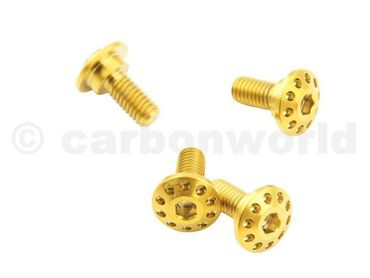 Screw kit gold front fender CW Racingparts Titan for Ducati 1098 1198 848 – Image 3