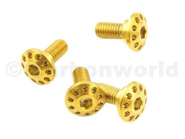 Screw kit gold front fender CW Racingparts Titan for Ducati Monster  – Image 2