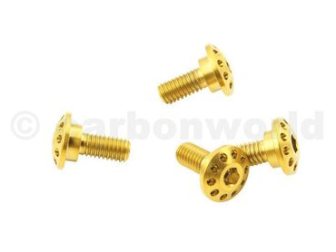 Screw kit gold front fender CW Racingparts Titan for Ducati Monster  – Image 4