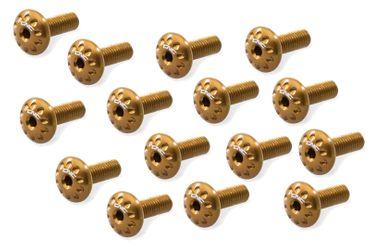 Screw kit gold CNC Racing for Ducati Panigale