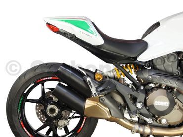 021DM12SM Carbonworld Blinkerkappen Carbon für Ducati Monster 821 1200 – Bild 6