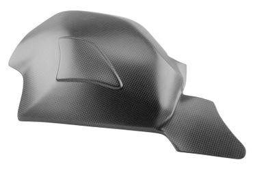 030DPV4SM Carbonworld Schwingenschutz Carbon Ducati Panigale V4 – Bild 1