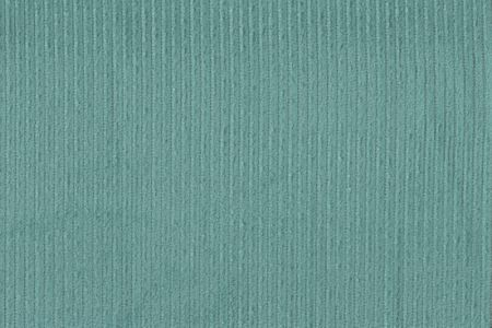Breitcord aus 100% Baumwolle in mint ca. 5 mm