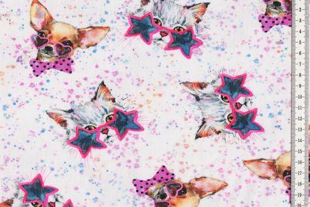 Baumwoll Jersey Let´s go Disco Hund und Katze