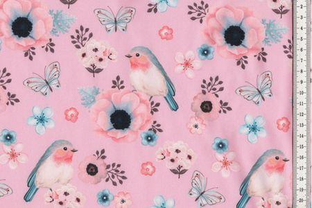 Softshell Birds Vögel in rosa, mit oder hellblau – Bild 4