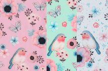 Softshell Birds Vögel in rosa, mit oder hellblau 001