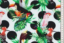 French Terry Stoff mit Vögel und Blättern auf weiß - Fräulein von Julie 001
