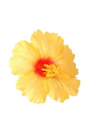 Hibiskus Blüten Haarclip Haarblüte – Bild 3