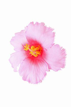 Hibiskus Blüten Haarclip Haarblüte – Bild 4
