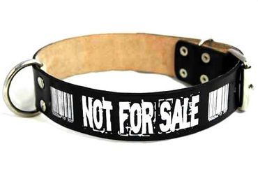 NOT FOR SALE Barcode Leder Hundehalsband – Bild 2