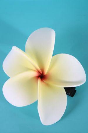 Frangipani Pin Up Blüten Haarclip Haarblüte – Bild 5