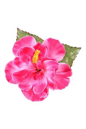 Riesige Hibiskus Pin Up Blüten Haarclip Haarblüte m. Blätter