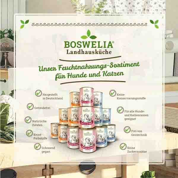 Boswelia Landhausküche Hund