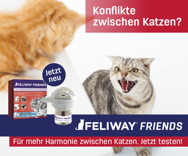 FELIWAY® FRIENDS Happy Cats Start-Set – Bild 4