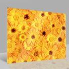 Glasbild Blumen 001