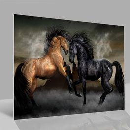 Glasbild Pferde