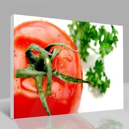 Leinwandbild Tomate