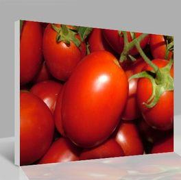 Leinwandbild Tomaten