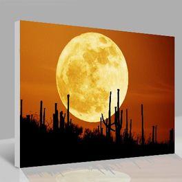 Leinwandbild Moon