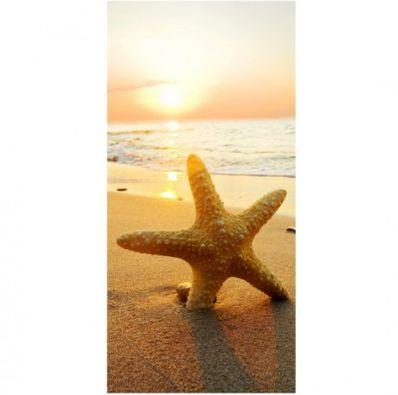 Glastür Folie Starfish