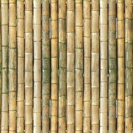 """""""Klebefolie"""" Bambus"""