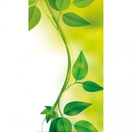 Kühlschrank Folie Naturblätter