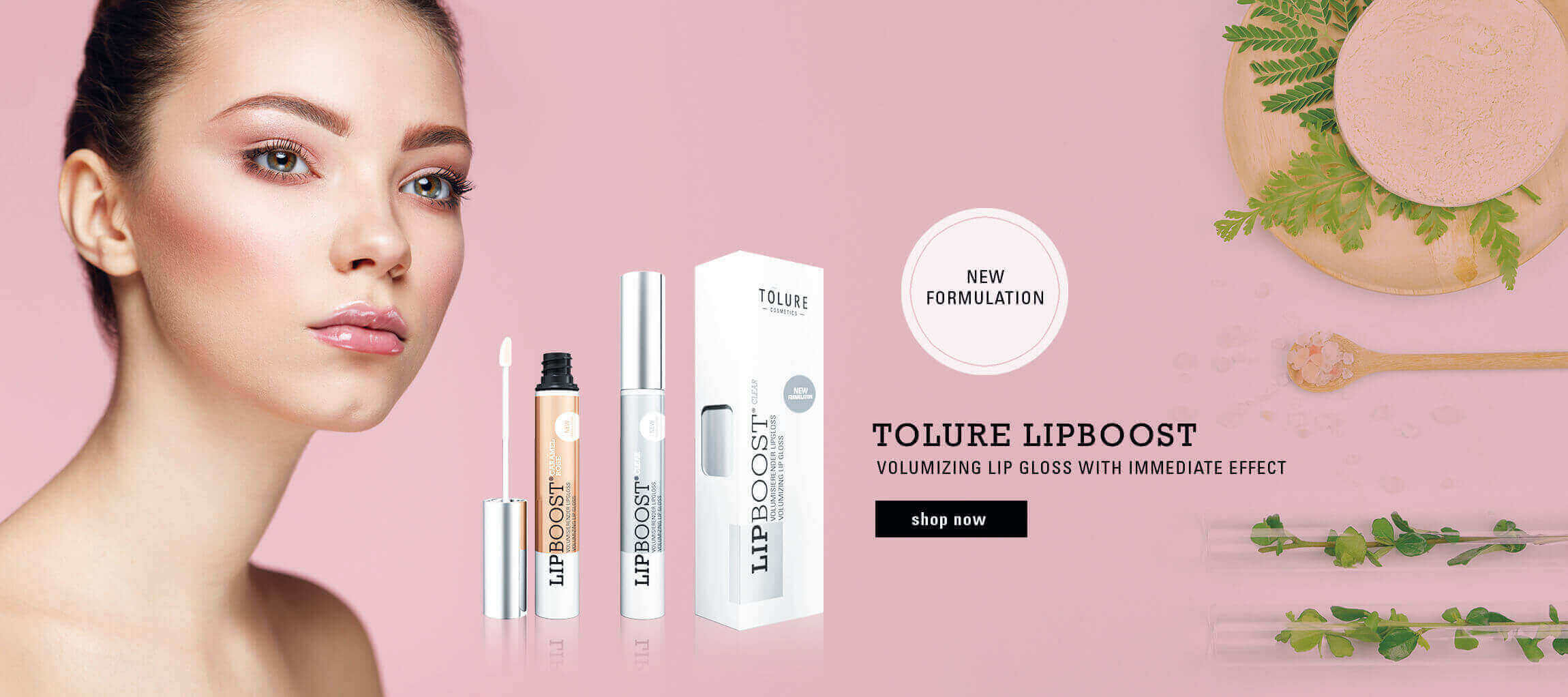 LipBoost' New Formulation'