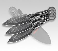 Kershaw 1747BW ION SET