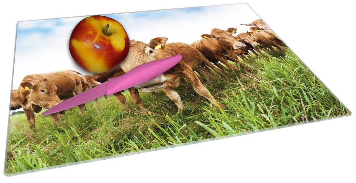 Glasunterlage Kühe im Sommer auf der Weide – Bild 2